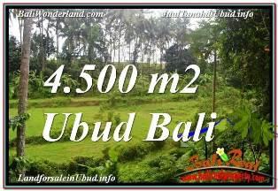 INVESTASI PROPERTY, JUAL MURAH TANAH di UBUD BALI TJUB675