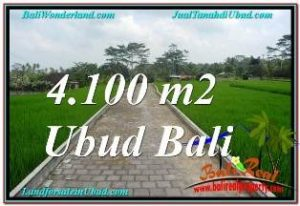 TANAH DIJUAL di UBUD Untuk INVESTASI TJUB676