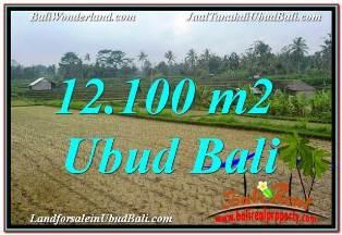 TANAH MURAH di UBUD Untuk INVESTASI TJUB677