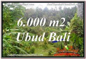 INVESTASI PROPERTI, TANAH MURAH DIJUAL di UBUD BALI TJUB682
