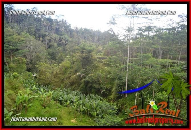 Investasi Properti, Tanah Murah Dijual di Ubud TJUB683