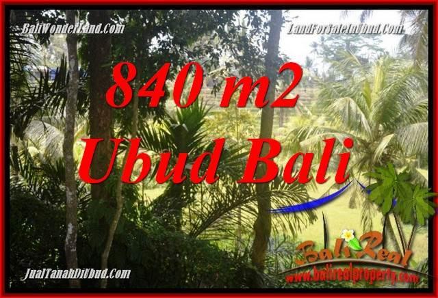 Tanah Murah di Ubud Bali Dijual 8 Are di Lod Tunduh