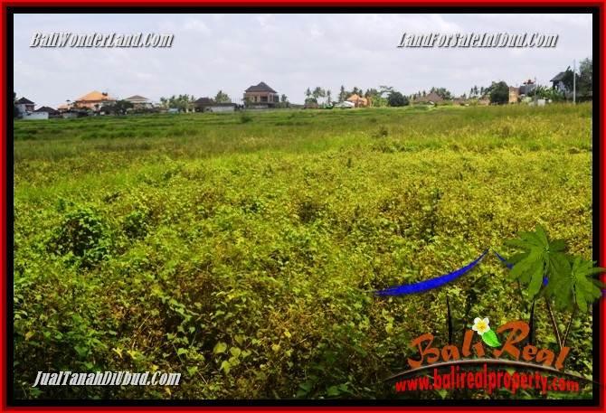 JUAL Tanah di Ubud 3 Are View sawah, lingkungan Villa