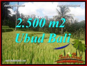 Tanah Murah Dijual di Ubud 2,500 m2 di Ubud Tegalalang