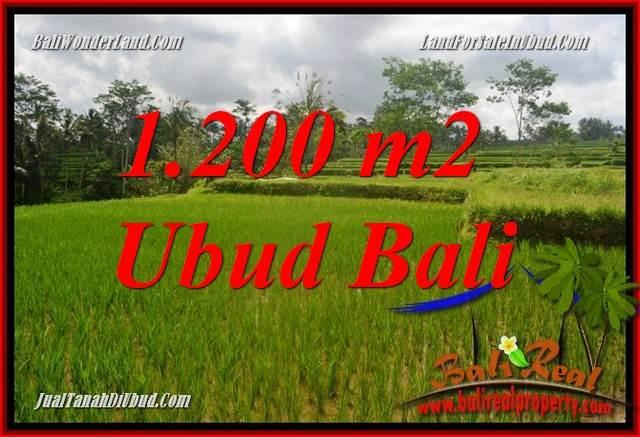 Tanah Dijual di Ubud Bali 1,200 m2 di Ubud Tegalalang