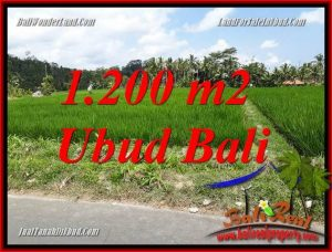 Tanah Dijual di Ubud Bali 1,200 m2 View sawah, lingkungan Villa