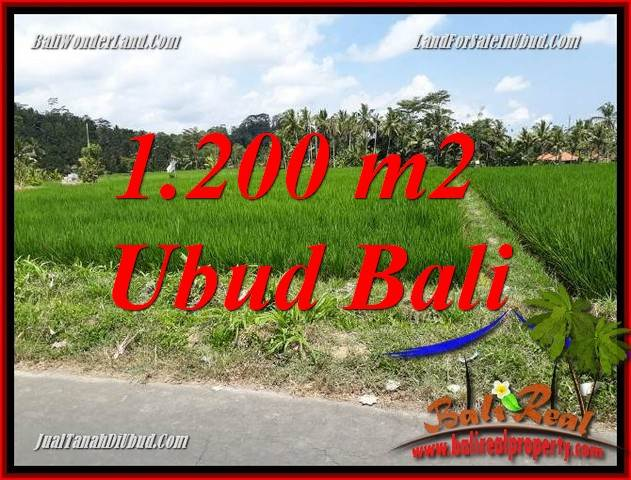 Investasi Property, Tanah Murah di Ubud Dijual TJUB694
