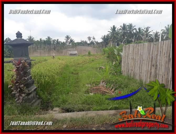 Tanah Dijual di Ubud Bali Untuk Investasi TJUB695