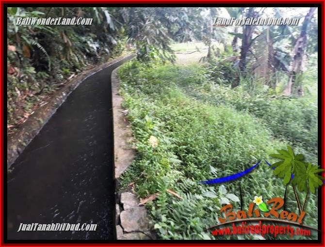 Dijual Tanah Murah di Ubud Bali 60 Are di Ubud Payangan