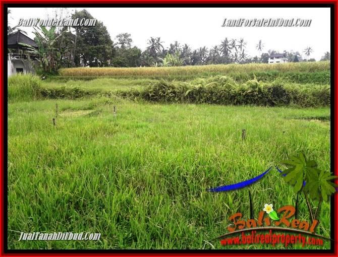 Dijual Murah Tanah di Ubud TJUB698