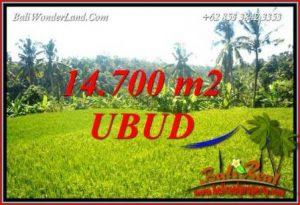 JUAL Tanah di Ubud Bali Untuk Investasi TJUB717