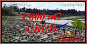 Investasi Property, jual Tanah di Ubud TJUB722