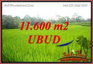 Investasi Property, jual Tanah Murah di Ubud TJUB732