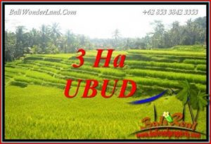 Tanah Murah jual di Ubud Bali 30,000 m2 View sawah, tebing dan sungai