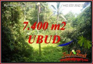 Dijual Tanah di Ubud 7,700 m2 di Ubud Tegalalang