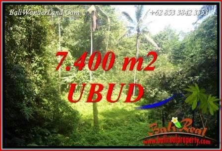 JUAL Tanah di Ubud Bali 77 Are View air terjun