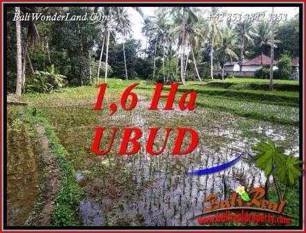 Dijual Tanah di Ubud 16,000 m2 di Ubud Tegalalang