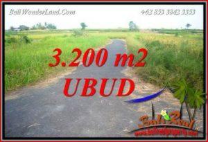 Dijual Tanah Murah di Ubud Bali 3,200 m2 di Ubud Singapadu