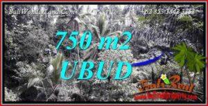 Tanah di Ubud Dijual Murah Untuk Investasi TJUB742