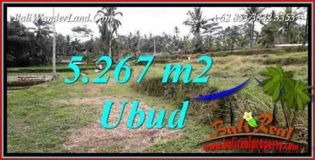 Investasi Property, Tanah di Ubud Dijual Murah TJUB743