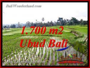 TANAH MURAH DIJUAL di UBUD BALI 1,700 m2 di TEGALALANG UBUD