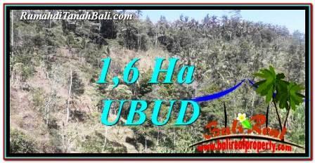 TANAH MURAH JUAL di UBUD 16,000 m2 View Tebing dan Sungai