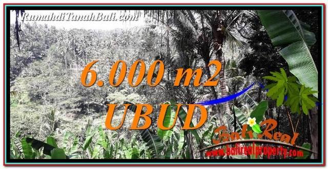 JUAL TANAH MURAH di UBUD BALI 60 Are View Sawah, tebing dan Sungai