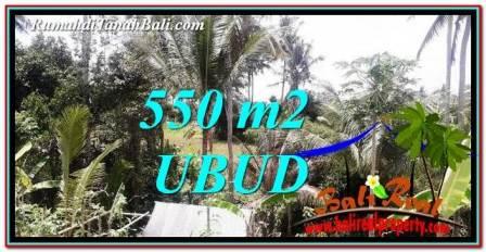 TANAH MURAH di UBUD 6 Are View sawah dan Sungai Kecil