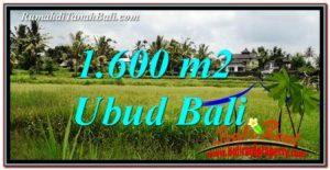 JUAL MURAH TANAH di UBUD 1,600 m2 View Sawah