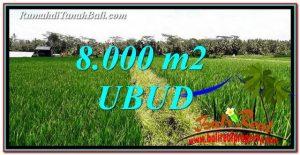 TANAH MURAH DIJUAL di UBUD 80 Are di Ubud Pejeng