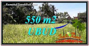 TANAH MURAH di UBUD JUAL 6 Are View kebun link Villa
