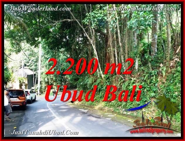 TANAH DIJUAL di UBUD BALI TJUB768