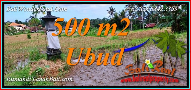 JUAL TANAH DI UBUD BALI Untuk INVESTASI TJUB812